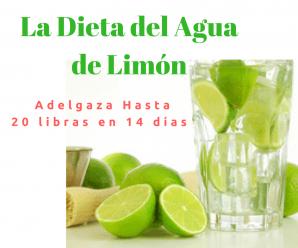Dieta del Limón de 14 días: Cómo Perder 9 kilos en 14 días