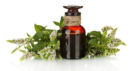 eliminar las verrugas usando aceite del árbol del té