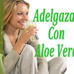 Aloe Vera para bajar de peso: Todo lo que necesita saber