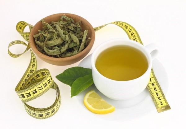 té de hojas de sen para adelgazar