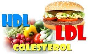 hdl colesterol