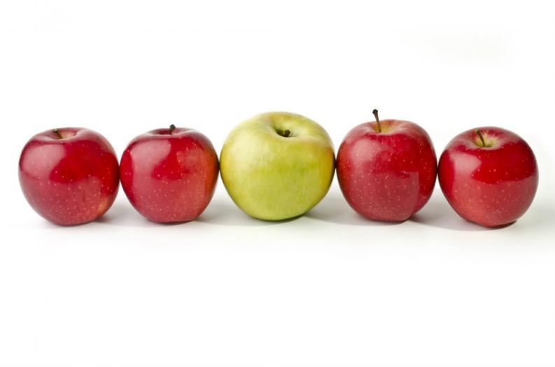 Aperitivos para una dieta para adelgazar en 10 días