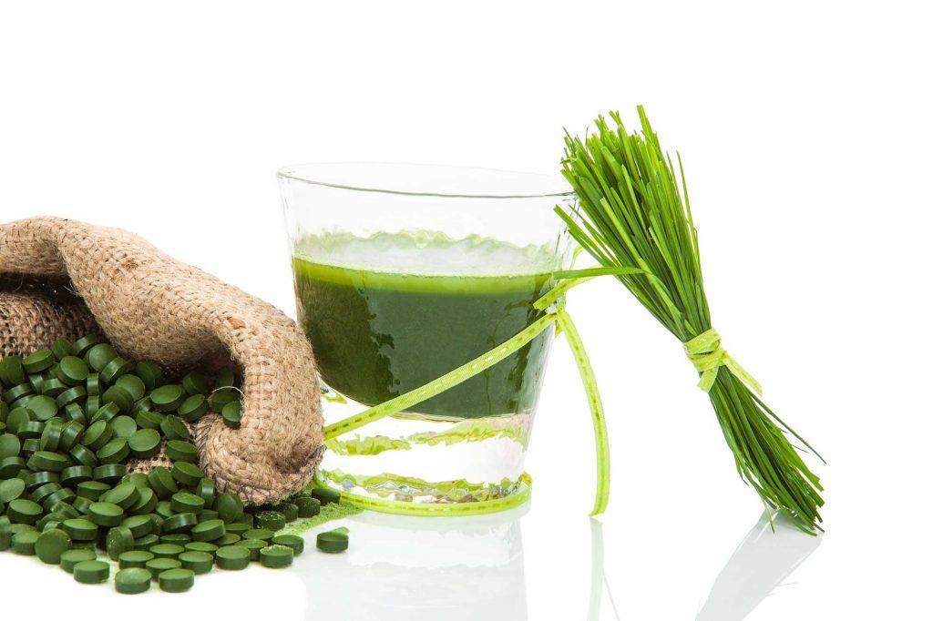 algas contra el colesterol